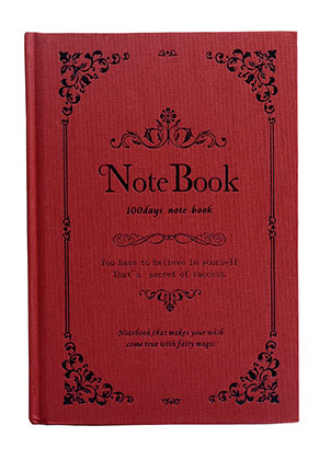 www.misstella.fr - Carnet de notes '100 days note book' 21,5x14,5x1,8cm