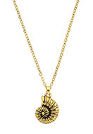 www.misstella.com - Necklace with pendant shell 45-50cm - J06220